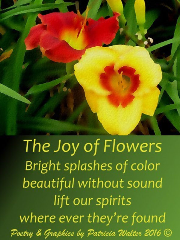 joy-of-flowers-2016