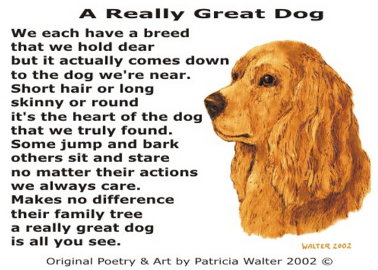 a-really-great-dog-2002 A Really Great Dog We each have a breed that we hold dear but it actually comes down to the dog we're near. Short hair or long skinny or round it's the heart of the dog that we truly found. some jump and bark others sit and stare no matter their actions we always care. Makes no difference their family tree a really great dog is all you see. Poetry & Art by Patricia Walter 2002 ©