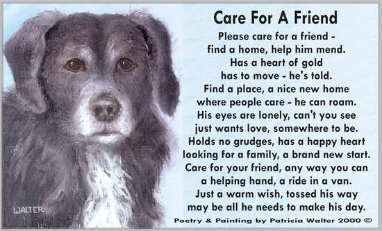 Care for a Friend Please care for a friend - find a home, help him mend. Has a gear of gold has to move - he's told. find a place, a nice new home where people care - he can roam. His eyes are lonely, can't you see just wants love, somewhere to be. Holds no grudges, has a happy heart looking for a family, a brand new start. Care for your friend, anyway you can a helping hand, a ride in a van. Just a warm wish, tossed his way may be all he needs to make his day. Poetry & Painting by Patricia Walter 2000 ©