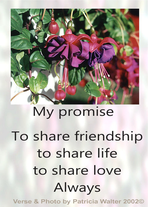 My Promise To share friendship to share life to share love Always Poetry & Art by Patricia Walter 2002 ©
