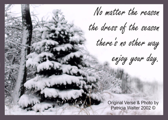 No Matter the Reason No matter the reason the dress of the season there's no other way enjoy your day. Poetry & Art by Patricia Walter 2002 ©