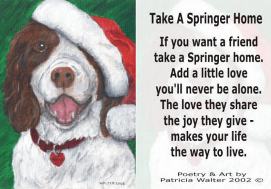 Take A Springer Home If you want a friend take a Springer home. Add a little love you'll never be alone. The love they share they joy they give - makes your life the way to live. Poetry & Art by Patricia Walter 2002 ©