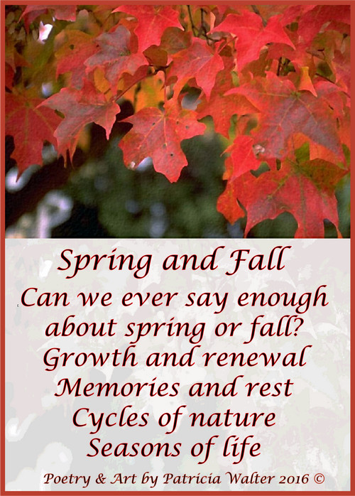 Spring and Fall Can we ever say enough about spring or fall? Growth and renewal Memories and rest Cycles of nature Seasons of life Poetry & Art by Patricia Walter 2016 ©