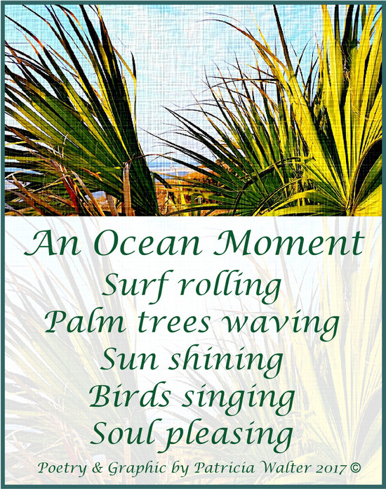 An Ocean Moment Surf rolling Palm trees waving Sun shining Birds singing Soul pleasing Poetry & Graphic by Patricia Walter 2017 ©