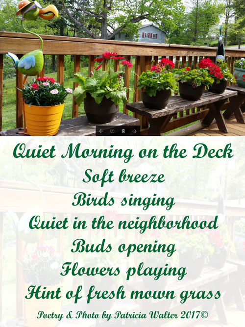 Quiet Morning on the Deck Soft breeze Birds singing Quiet in the neighborhood Buds opening Flowers playing Hint of fresh mown grass Poetry & Photo by Patricia Walter 2017 ©