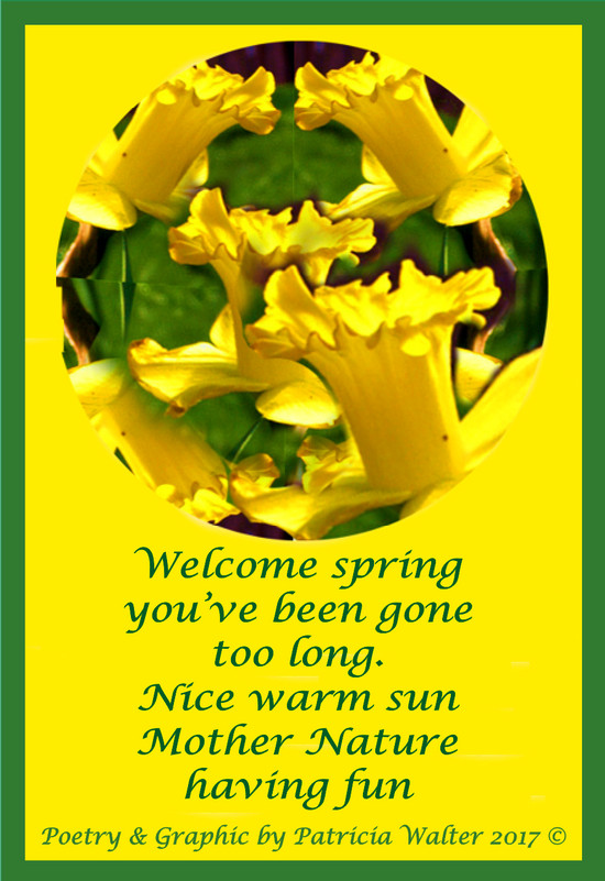 Welcome spring, you've been gone too long. Nice warm sun, Mother Nature having fun. Poetry & Graphic by Patricia Walter 2017