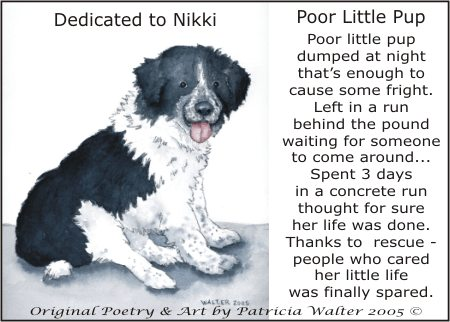 Nikki Poetry and Art by Patricia Walter
