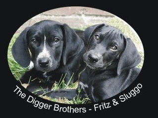 The Digger Brothers, Fritz & Sluggo, belonging to Patricia Walter the poet and artist.