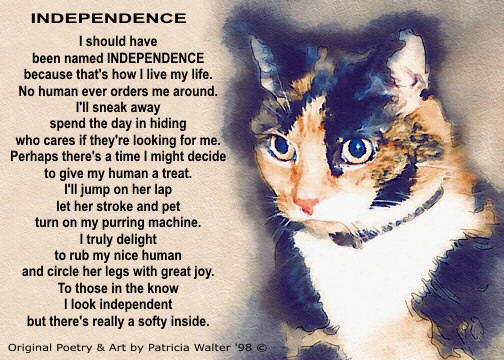 Independence - original cat poetry & art by Patricia Walter