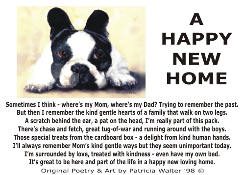 A Happy New Home 1