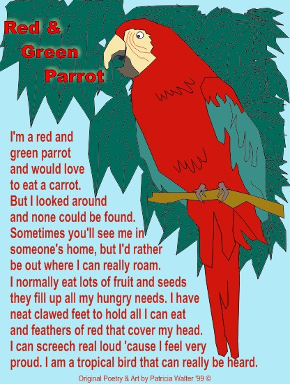 Red & Green Parrot 1