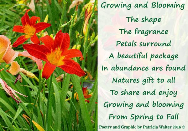 growing-blooming-poem-2016