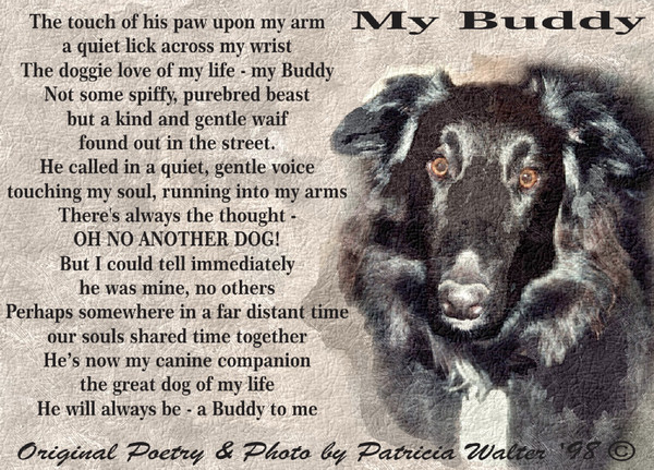my-buddy-1998