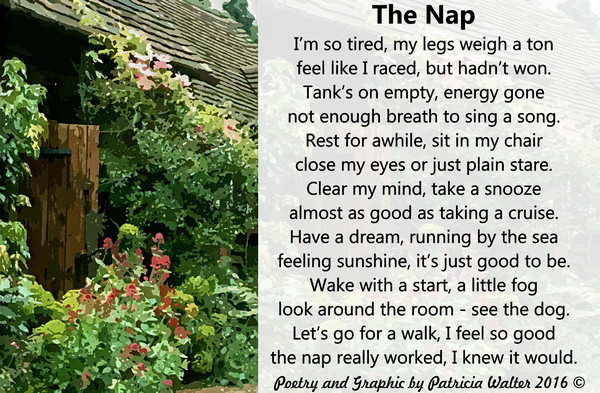 The Nap 2