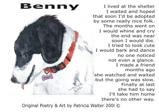 benny-2001 Benny I lived at the shelter I waited and hoped that soon I'd be adopted by some really nice folk. The months went on I would whine and cry the end was near soon I would die. I tried to look cute I would bark and dance no one noticed not even a glance. I made a friend months ago she watched and waited but the going was slow. Finally at last she had to say I'll take him home there's no other way. Poetry & Art by Patricia Walter 2001 ©
