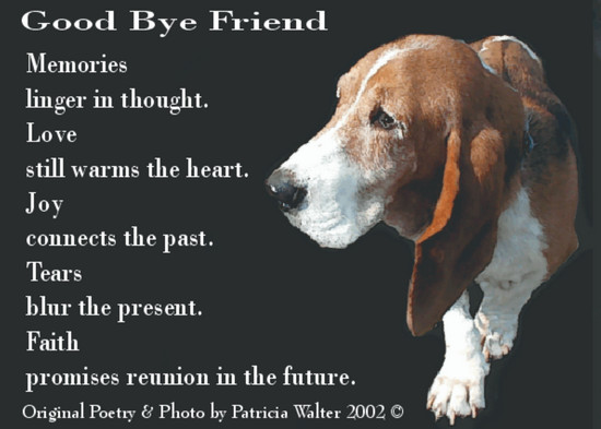 Goodbye Friend  Memories linger in thought. Love still warms the heart. Joy connects the past. Tears blur the present. Faith promises reunion in the future.  Original Poetry & Photo by Patricia Walter 2002 ©