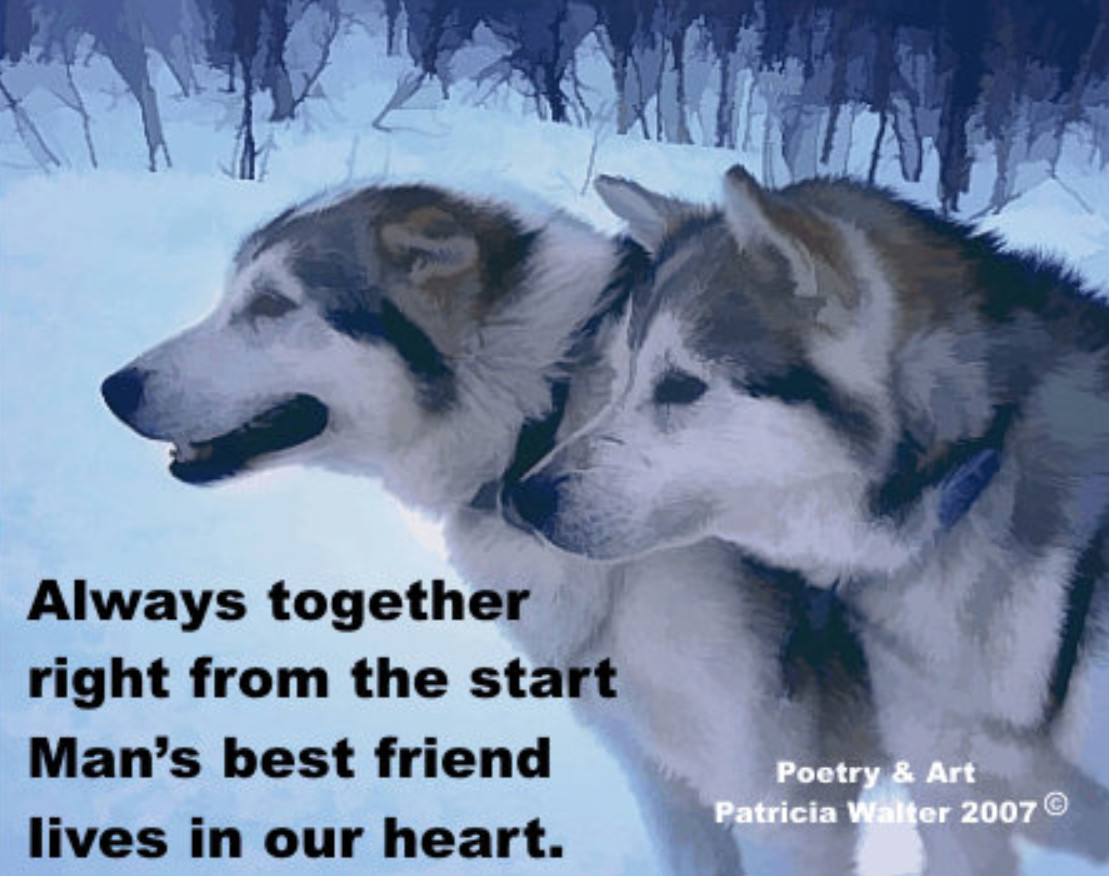 Huskies Always together, right from the start. Man's best friend lives in our heart. Poetry & Art by Patricia Walter 2007 ©