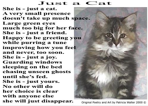 Just a Cat poem by Patricia Walter