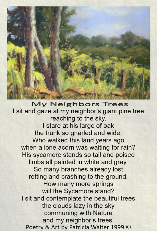 my-neighbors-trees-1999