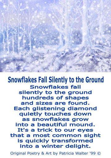 Snowflakes fall silently to the ground