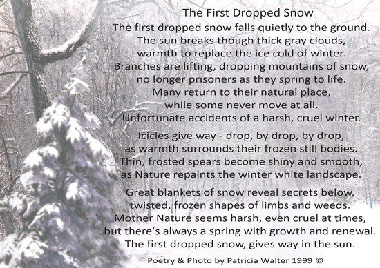 the-first-dropped-snow-1999