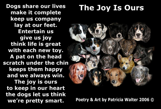 The Joy is Ours  Dogs share our lives make it complete keep us company lay at our feet. Entertain us give us joy think life is great with each new toy. A pat on the head scratch under the chin keeps them happy and we always win. The joy is ours to keep in our heart the dogs let us think we're pretty smart.  Poetry & Art by Patricia Walter 2006 ©