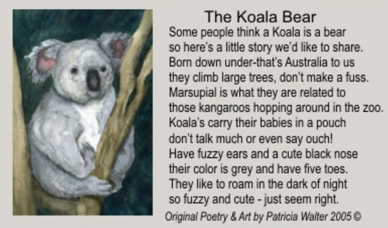 The Koala Bear Some people think a Koala is a bear so here's a little story we'd like to share. born down under - that's Australia to us they climb large trees, don't make a fuss. Marsupial is what they are related to those kangaroos hopping around in the zoo. Koalas carry their babies in a pouch don't talk much or even say ouch! Have fuzzy ears and a cute black nose their color is grey and have five toes. They like to roam in the dark of night so fuzzy and cute - just seem right. Poetry & Art by Patricia Walter 2005 ©
