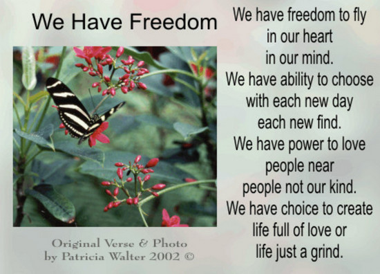 We Have Freedom We have freedom to fly in our heart in our mind. We have ability to choose with each new day each new find. We have power to love people near people not our kind. We have choice to create life full of love or life just a grind. Poetry & Photo by Patricia Walter 2002 ©