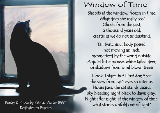 window-of-time-1999