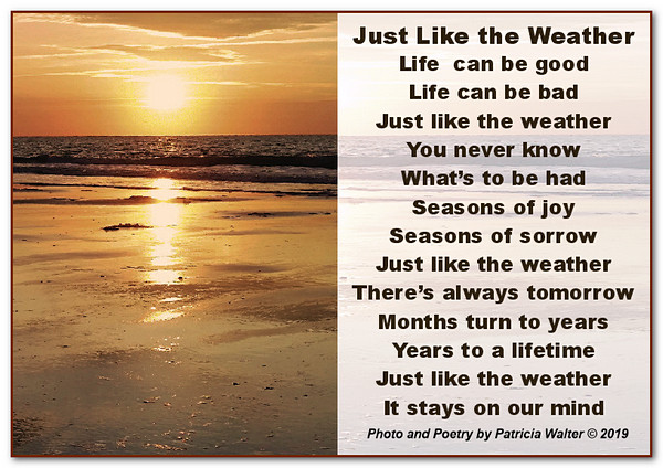 Just Like The Weathe.r Life can be goodLife can be bad. Just like the weatherYou never know. What's to be had. Seasons of joy. Seasons of sorrow. Just like the weather here's always tomorrow. Months turn to years. Years to a lifetime. Just like the weathe, rIt stays on our mind. Poetry by Patricia Walter 2019 ©
