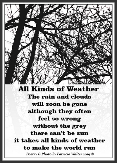 All Kinds of Weather by Patricia Walter 2019