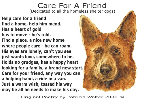 Care for a Friend Dedicated to Shelter Dogs by Patricia Walter