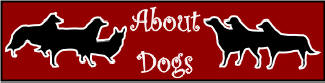 About Dogs Website