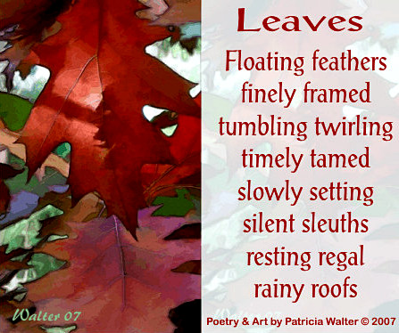 Leaves poem by Patricia Walter