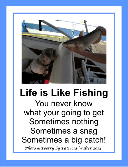 Life is Like Fishing poem by Patricia Walter