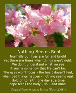 nothingseemsreal
