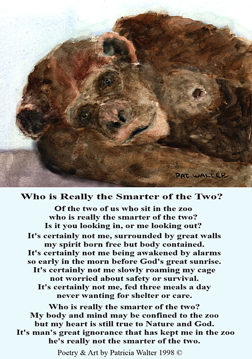 Who is Really the Smarter of the two poem by Patricia Walter